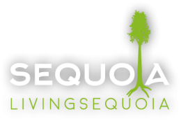 living sequoia